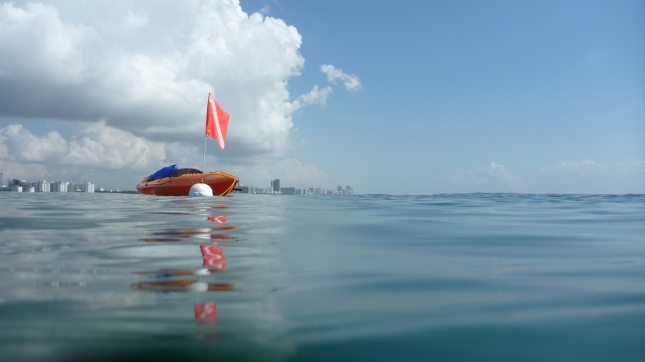 Snorkeling next to Kayak near Miami Ship channel outlet