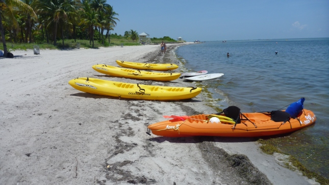 Lunch break and rest at Crandon Park on Key Biscayne
